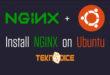 Ubuntu 18.04 Üzerine NGINX Kurulumu